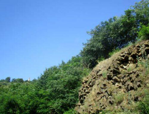 GAMBELLARA E I SUOI VINI … MA CHE BRAVI (grazie ad antichi vulcani…)