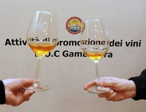 GAMBELLARA (e i suoi vini)… NON PIU' CARNEADE DEI MIEI VIAGGI