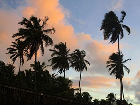 Cielo del Pernambuco... nel ... O Brasil Tropical.....
