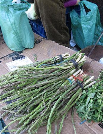 Asparagi a Cilavegna (nb non questi, che sono i magnigici Trigueros...)