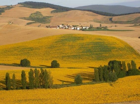 Paesaggio prepirenaico lungo il Camino....