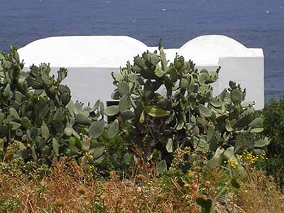 ita - pantelleria dammusi rid