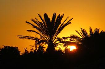 tunisia 15 levar sole b
