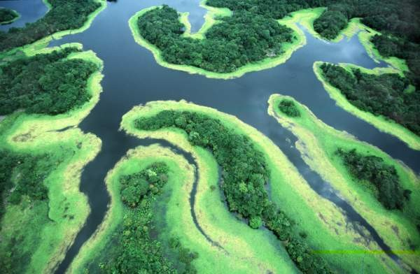 varie - Amazzoni Rio 6 Negro
